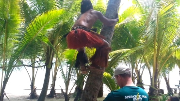 World Champion Coconut Climber