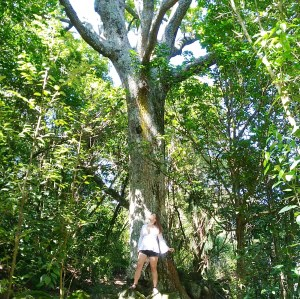 nikki-louise-in-auckland-forest