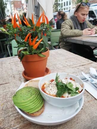 shakshuka-with-a-side-of-avocado