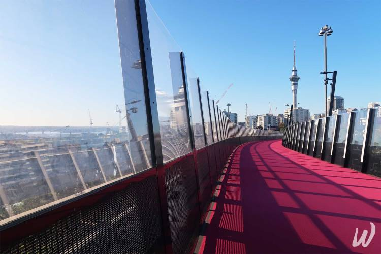 aucklands-pink-cyclepath