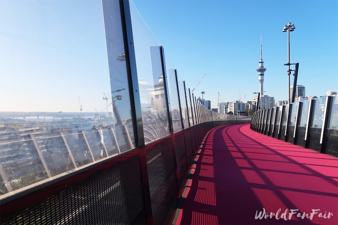 Pink cycle path to Skytower overlooking Auckland