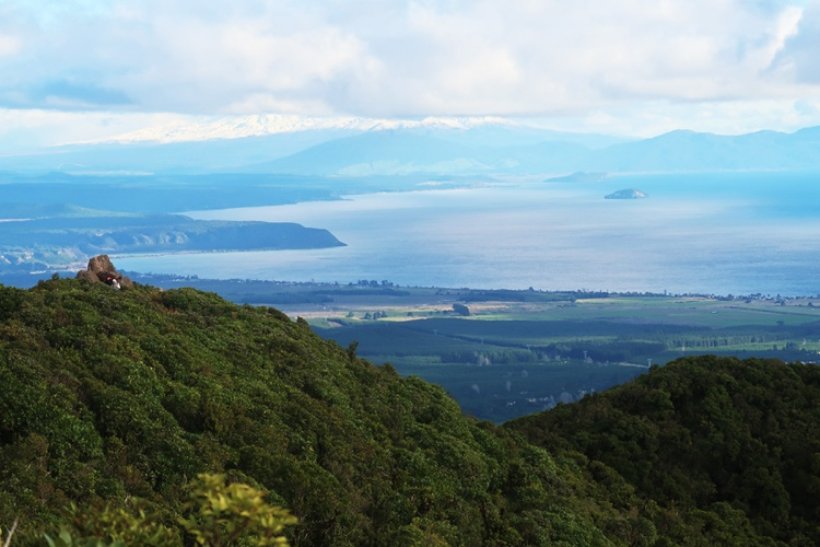 View over Lake Taupo from Mt Tauhara