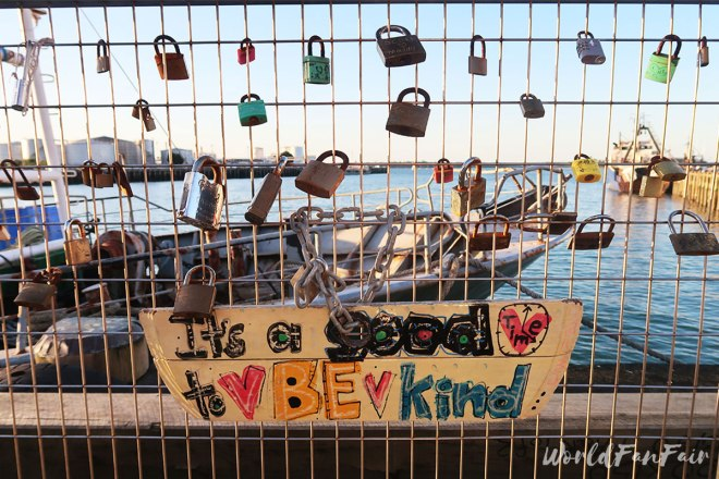 Padlocks on a fence overlooking Auckland waterfront