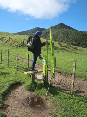 Hopping the stile to start Mt Tauhara track