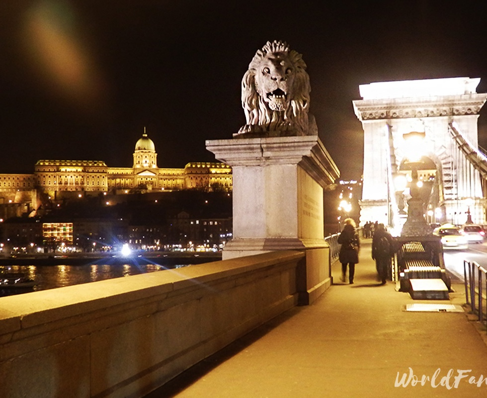 Budapest's Chain Bridge, Lion statue, and Buda Castle at night