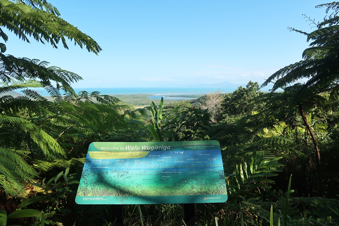 Looking out through Daintree Rainforest to Great Barrier Reef